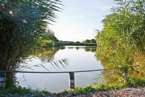 lenyűgöző természeti környezetben, közel 5 és fél hektáros halastórendszer