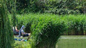 Kapásra várva a Völgyhídi Horgásztó versenyen
