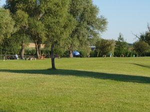 A nyári horgászversenyen a Balatonnál a Völgyhídi Horgásztónál mindenki elégedett volt a tóval és a halállománnyal