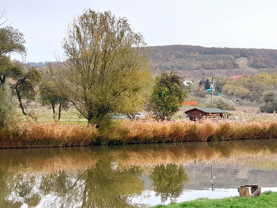 ősz völgyhídi horgásztavon