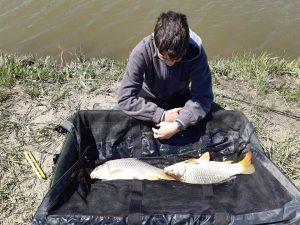 horgászengedély horgászat kezdőknek horgászat fajtái horgászat felszerelés horgászat etetés horgászat pontyra horgászat amurra horgászat csukára horgászat kárászra horgászat keszegre horgászat csontival féderes horgászat catch and release horgászat harcsára horgászat időjárás horgászat állami engedéllyel horgászat gyerekeknek horgászat iszapos fenéken horgászati tippek